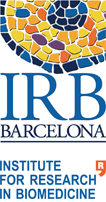 Institute for Research in Biomedicine